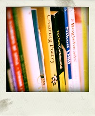 books (alignment) Tags: blur poetry books depthoffield crossprocessing grainy multicolor poladroid
