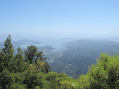 SF bay view from Mt. Tam