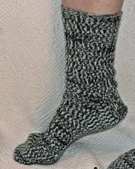 20090504 Rag Sock