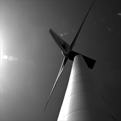 wind turbine mono (backroom.angel) Tags: square mono scotland blackwhite windturbine dunlaw