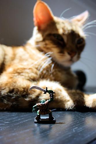 Orc Vs. Cat