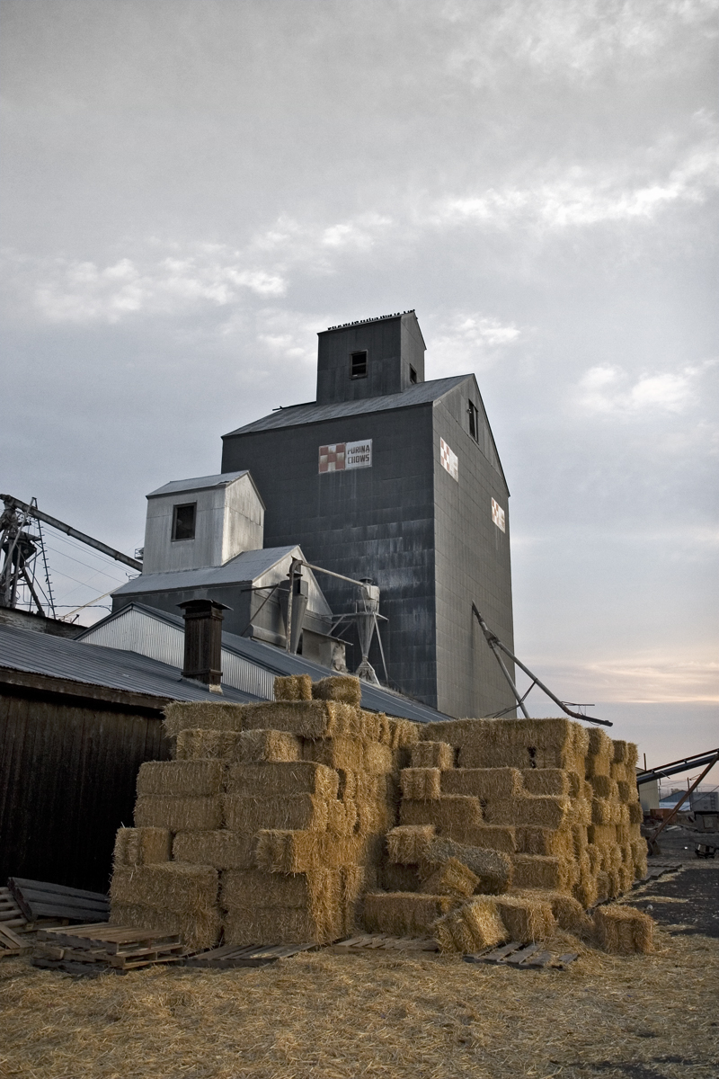 Morning-Hay-Stack_6383