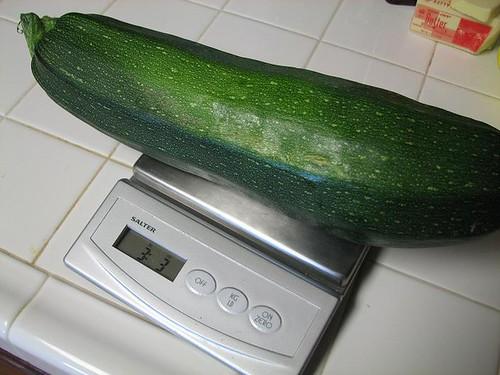 Giant Zucchini: 3 lbs, 3 oz