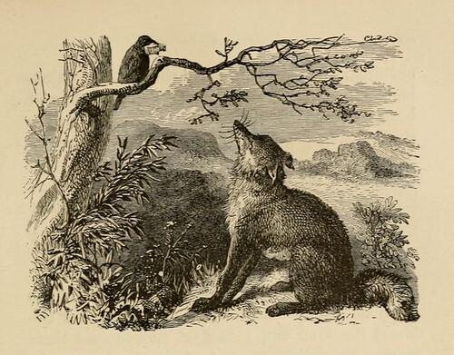 Vulpes et Corvus