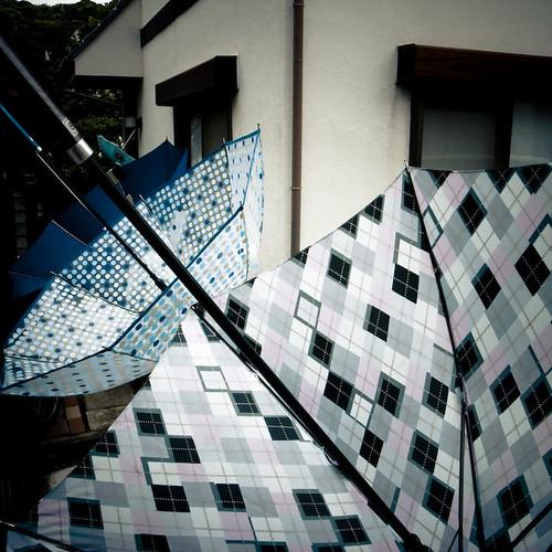 Triobrella