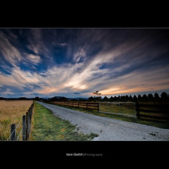 On the Farm in New Zealand. ([ Kane ]) Tags: road new trees newzealand sky grass clouds rural fence evening dusk farm explore driveway zealand nz kane frontpage aotearoa gisborne eastcoast fenceline gledhill wipsy 400d wipsyclouds kanegledhill eastcoaast kanegledhillphotography