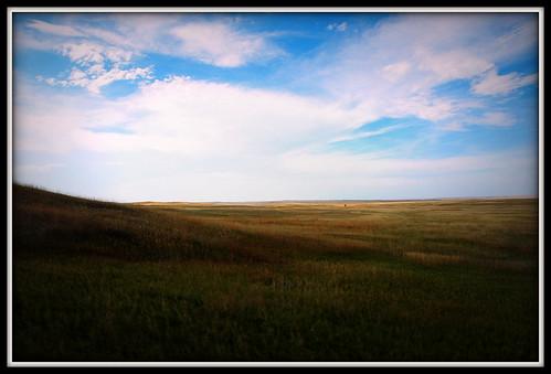 SD grassland 2