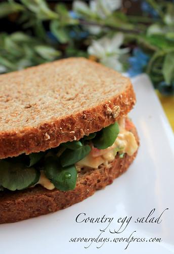 Sandwich salad trứng 5
