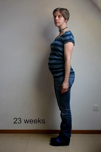 wee grub @ 23 weeks