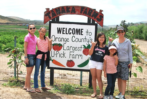 Tanaka Farms: May 2011