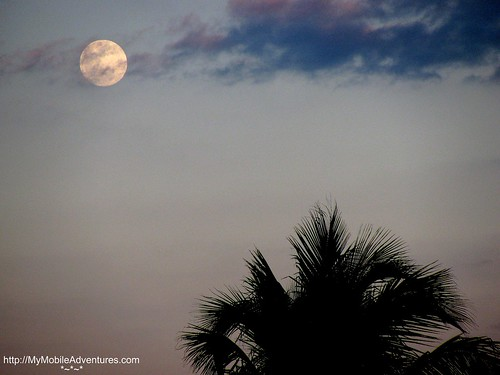 IMG_0292-moon-palm-clouds-Sanibel-Island