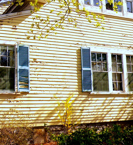 Old New England Doors and Windows a set by Stephanie'