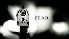 Fear Redux