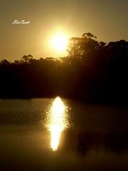 Reflexo (SL04 Bia Conte) Tags: parque sunset lago prdosol rvores