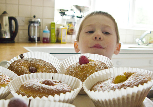 Freshly baked muffins attract Milo's attention, March 2009