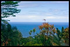 View from the Garden of Eden, Maui #2 (Robert Krasker) Tags: gardenofeden maui hanahighway