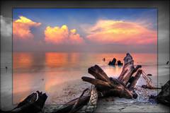 sunrise kelanang (izamree™) Tags: sky beach sunrise pantai selangor banting kelanang izamree