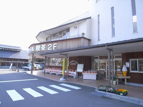 ウミガメふれあいパーク@三重県紀宝町-01