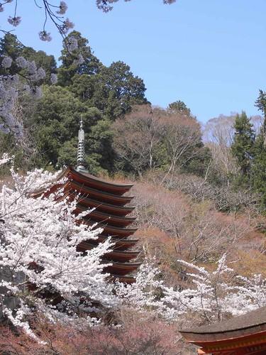 09-04-10【桜】@談山神社-10