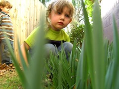 (photograph-e) Tags: boy people brown plant green nature girl look grass leaves fence children wonder outdoors eyes focus faces emotion random young ground anger spy unknown curious ponder kennedy sneaky crouch between braid lean curiousity traveler sneek bentdown dc8600