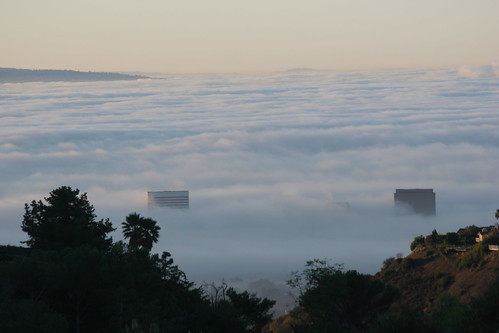 A Sea of Fog.JPG