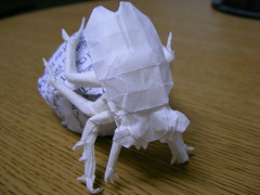 Sipho Mabona's Dung Beetle, folded by me (Hansen Yang) Tags: origami pattern beetle crease dung sipho mabona