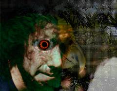 Parrot Man (K. F. Mush) Tags: red brazil man tree green eye leaves photoshop mouth hair beard nikon beak feather parrot henry adobe nikkor cs4