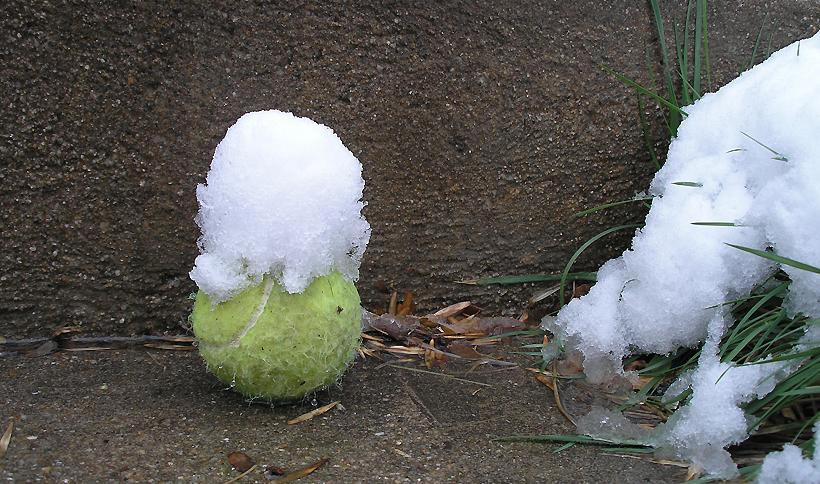 Snowy Ball