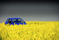Drive to the sun... (Nicolas Valentin) Tags: england field car yellow x hero winner pollen colza mywinners abigfave colorphotoaward flickrchallengewinner
