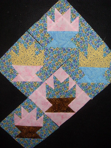 Rho's Cactus Blocks 5-9