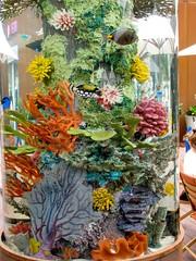 Acquario a Malibu (Billamix) Tags: acquarium malibu tropicalfish losangelescalifornia