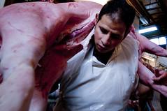 marrano volador (fonsico) Tags: plaza man animal pig deleted7 blood deleted9 colombia bogota deleted6 market deleted3 deleted2 deleted4 save deleted10 pork slaughter murder deleted5 deleted8 lucha libre asesino sangre montenegro marrano asesinato paloquemao fonsico flyingpork elmarranovolador