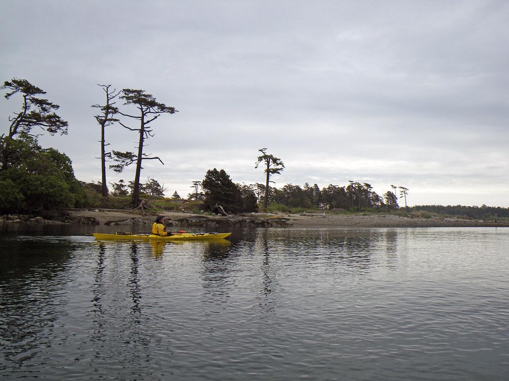 2009-05-18 Chatham Island 103