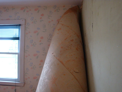 peeling the wallpaper