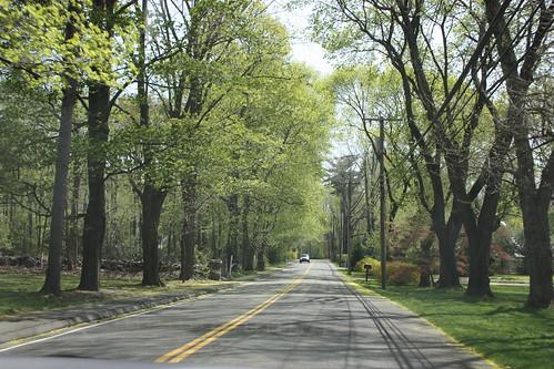 The roads in Darien