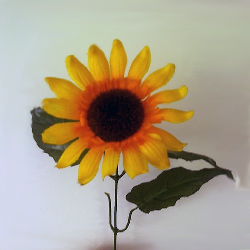 "The Council Flats of Kingsbury - ""Sunflowers"" cover art"
