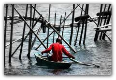 Fishing in Baruyan (ibarra_svd) Tags: lake water canon river boat fishing fisherman philippines bamboo filipino canondslr pinoy picnik redshirt banca baruyan canondigitalcamera wowphilippines eos450d canondigitalrebelkiss teampilipinas canoneos450d worldtrekker ormindoro kawil baklad regionivb barfabella anthonyibarrafabella canondigitalrebeleosxsi barf2009 ibarrasvd ibarrafabella filipinofisherman baruyancalapanormindoro kaluanganlake ibabacalapancity