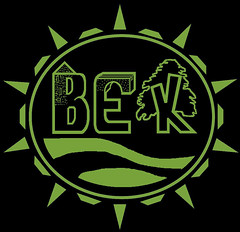 vek logo inverted green 1