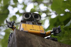 Help me down pleaasse (K9_Kirsty) Tags: wood light tree fence robot bokeh pixar walle
