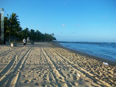 Waikiki in early morning