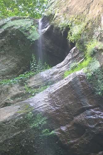 Wildcat Canyon Waterfall