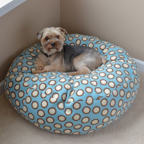 small dog sitting on a DIY dog bean bag chair