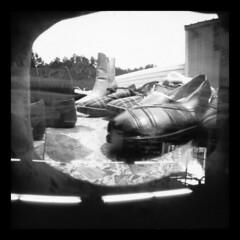 Shoes Vs Food