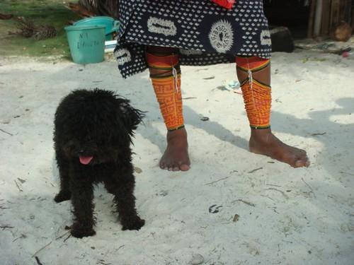 Kuna dress + puppy