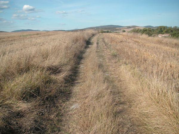 Foto 3 - Senda paralela a la Vía Verde del Zadorra