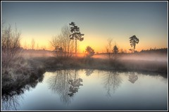 The Sun shows itself (Martin_Finlayson) Tags: trees sun mist water pool sunrise reflections earlymorning hdr bej omot karmapotd karmapotw crooksburycommon alemdagqualityonlyclub ubej colorsofthesoul daarklands yourwonderland lirodon passiondclic