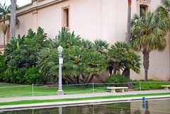 Casa del Prado (mousetrout) Tags: california park travel vacation sandiego balboapark lilypond sandiegoca casadelprado