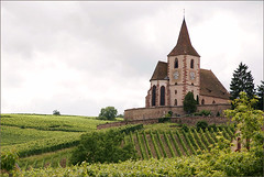 Hunawihr church and vineyards (Foto Martien) Tags: france church vineyard frankreich kirche alsace frankrijk fabulous vignoble glise weinberg elsas wijngaard elzas hautrhin hunawihr routedesvins sonyalpha100 abigfave hunaweier martienuiterweerd carlzeisssony1680 mostbeautifulpicturembpictures elsssischenweinstrase alsaceswineroute churchhunawihr churchofstjacqueslemajeur alsatianwineroad
