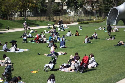 芝生でピクニック