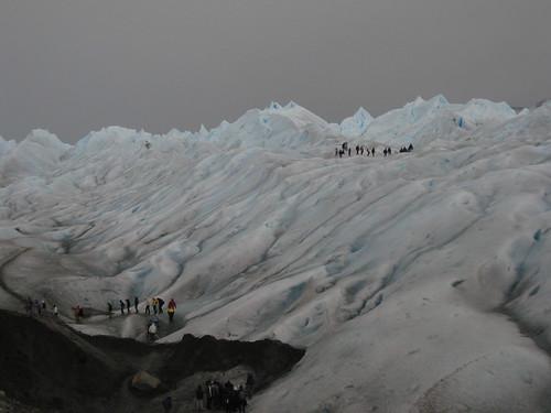 tiny ants. Glaciar Perito Moreno
